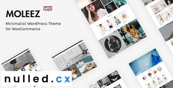 Moleez v2.3.11 – Minimalist WordPress Theme for WooCommerce